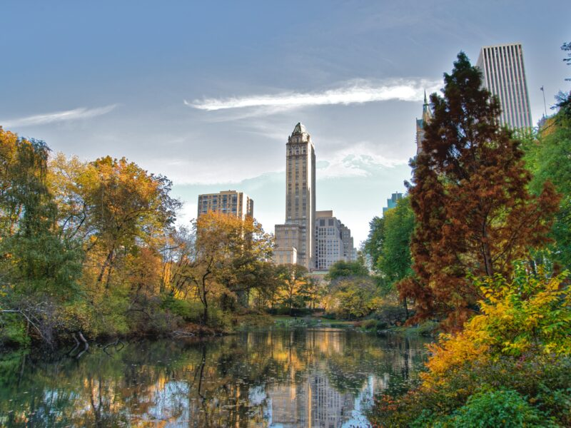 Central Park Comes Alive With Music-Based App: Soundwalk